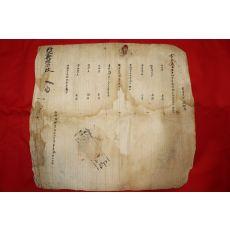 조선시대 창원거주 경주최씨 을묘식 호구단자